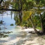 beach-4388225_640