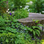 bench-5177709_640