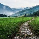 walkway-918900_640